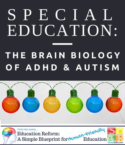brain biology of adhd & autism